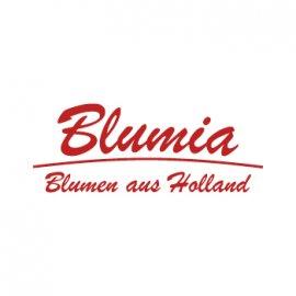 Logo Blumia